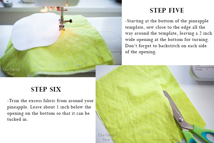 Pineapple Pocket Tutorial 4