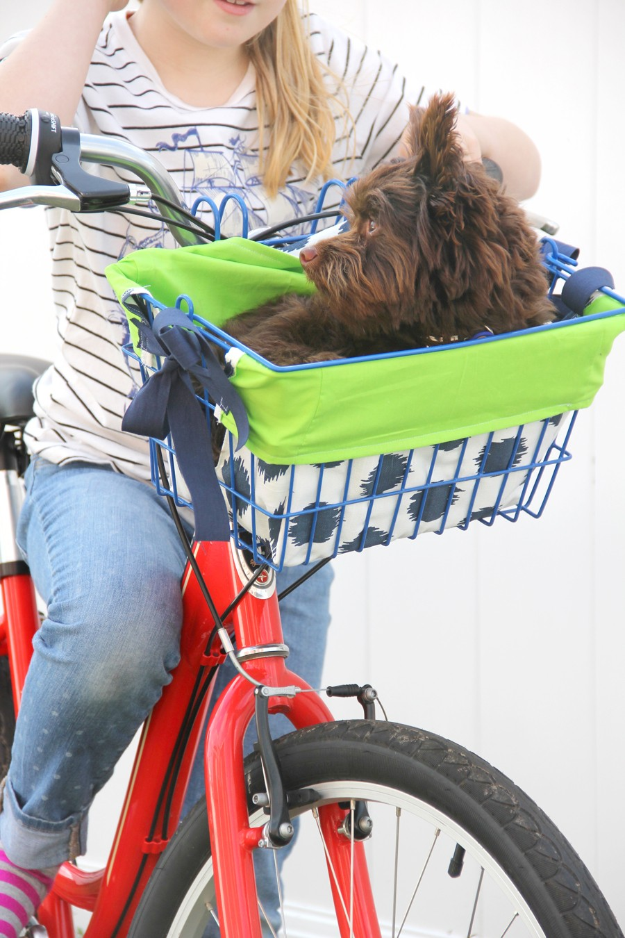 How to make a doggie bike basket liner