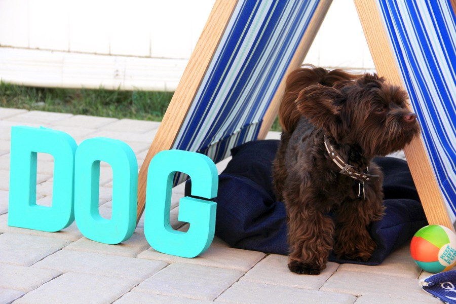 portable dog shade DIY