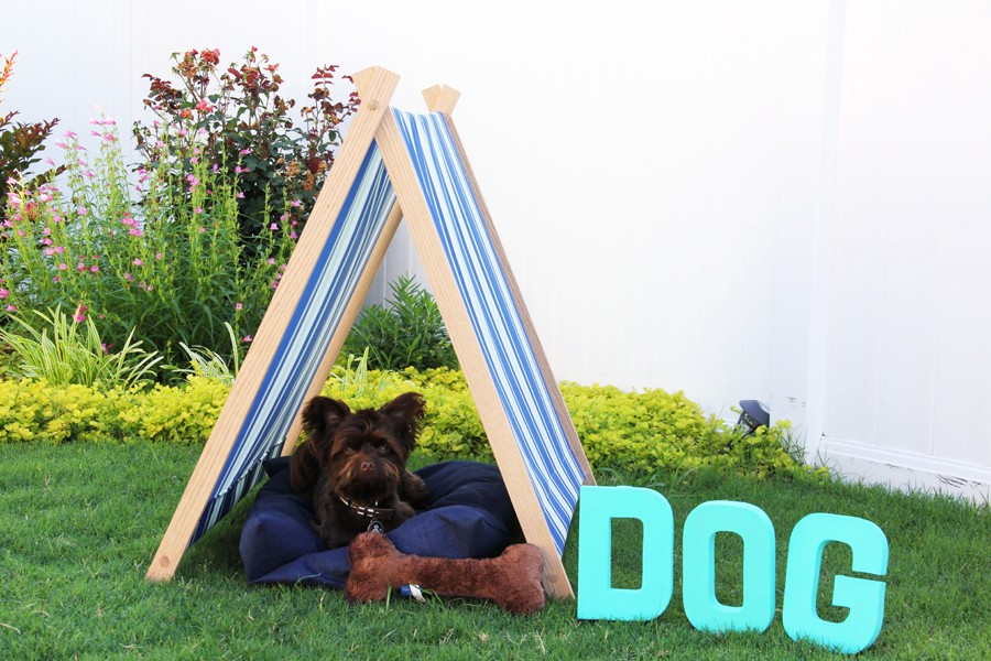 how to make a dog tent, the perfect place for doggie shade this Summer!